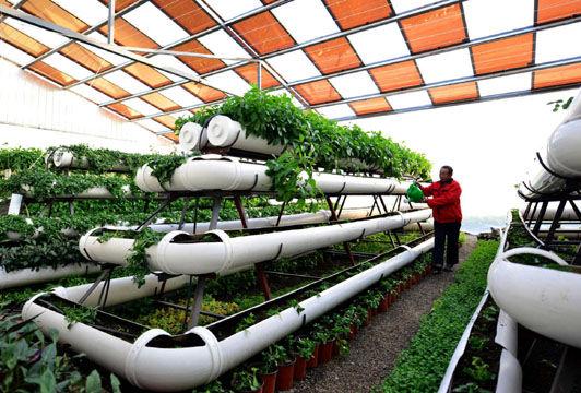 agricultura moderna