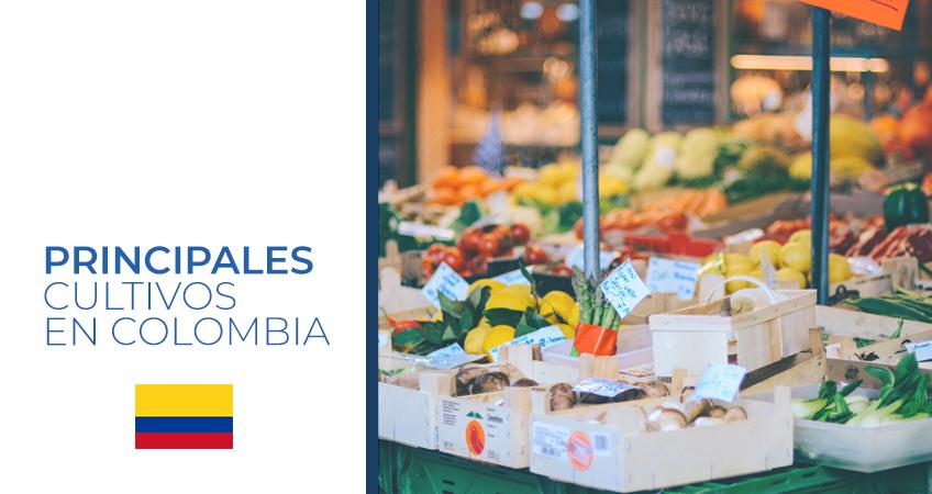 cultivos en Colombia