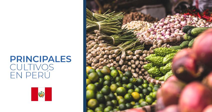cultivos de Perú