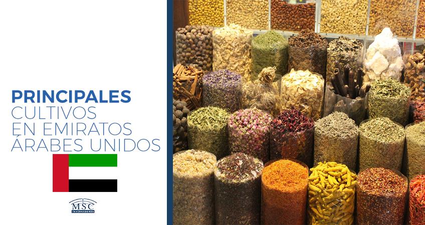 cultivos en Emiratos Árabes Unidos