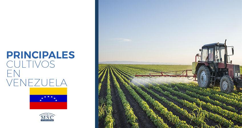 cultivos en venezuela