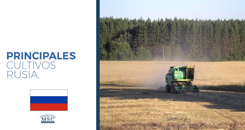 cultivos en Rusia