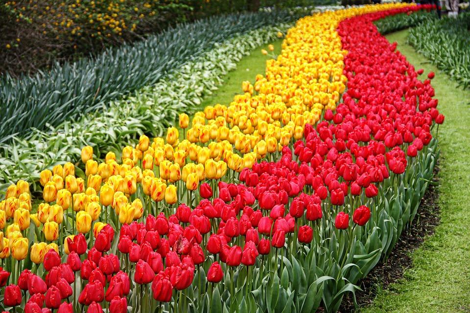 jardines del mundo
